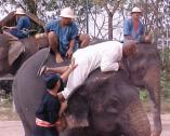 There is an art to mounting an elephant.